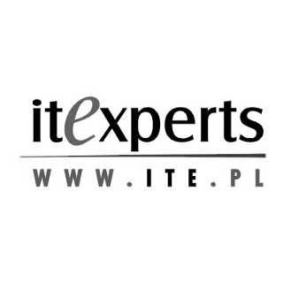 IT Experts logo gray