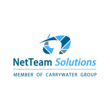 NetTeam Solutions logo